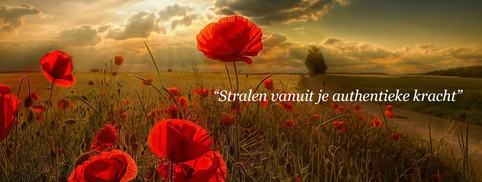banner_stralen_vanuit_kracht